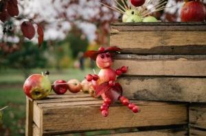 Jau astoto gadu Latvijas sulīgākais festivāls Dobelē pulcē novada un apkārtnes mājražotājus, stādaudzētājus, augļkopjus un interesentus 25