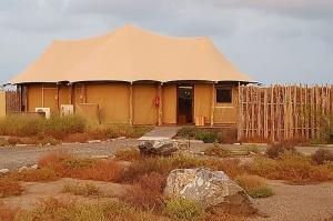 Travelnews.lv nakšņo luksus klases teltī, ko piedāvā «Kingfisher Lodge». Atbalsta: VisitSharjah.com un Novatours.lv 1