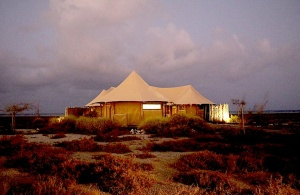 Travelnews.lv nakšņo luksus klases teltī, ko piedāvā «Kingfisher Lodge». Atbalsta: VisitSharjah.com un Novatours.lv 6