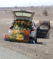 Travelnews.lv iepazīst Šārdžas emirāta lieliskos lielceļus ar 120 km/h. Atbalsta: VisitSharjah.com un Novatours.lv 26